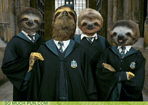 Harry Potter,puns,slytherin,sloths,funny