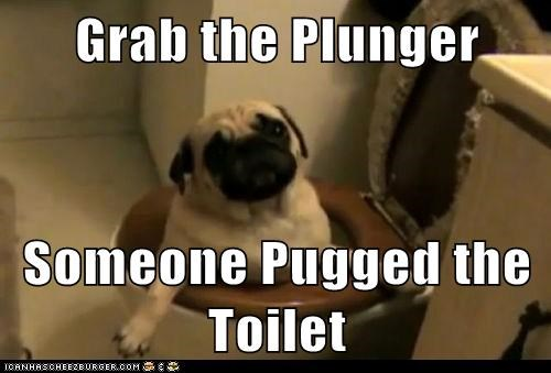 toilet plunger funny - 7443206912