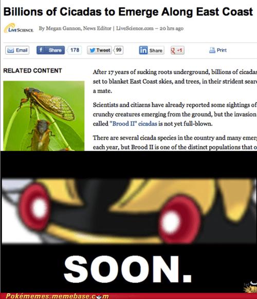Pokémon IRL cicadas ninjask - 7443226368
