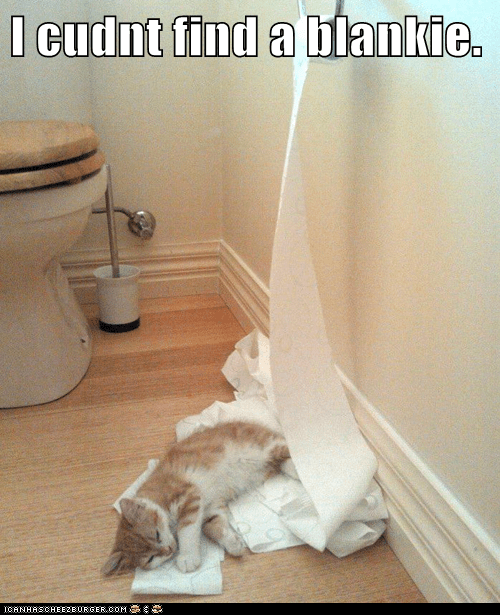nap toilet paper sleep blanket funny - 7443278592
