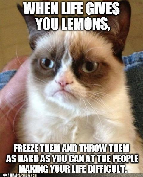 lemonade Grumpy Cat funny - 7443976448