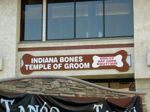 raiders of the lost ark,Indiana Bones,Indiana Jones,temple of doom,temple of groom,puns,monday thru friday,g rated