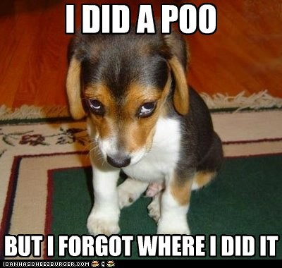 I DID A POO BUT I FORGOT WHERE I DID IT