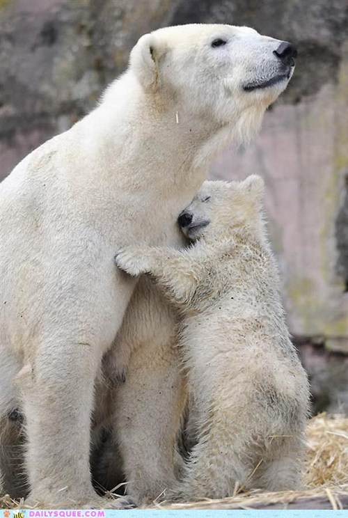 love mom hug - 7444523520