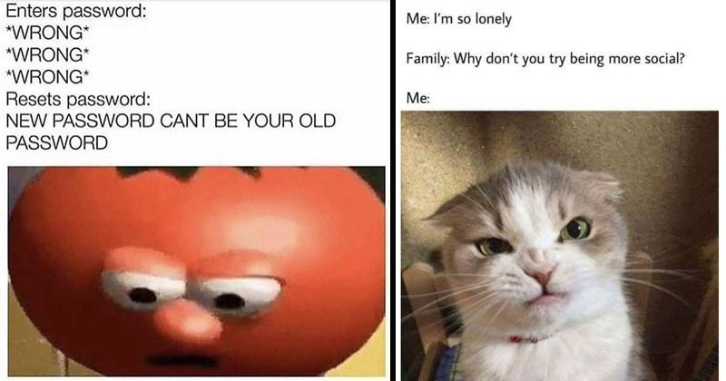 random memes, funny memes, sassy memes