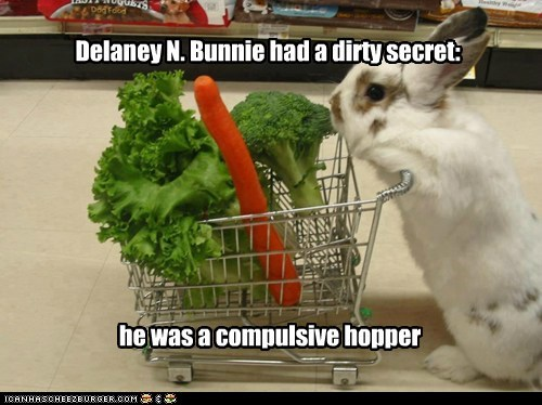 pun shopping bunny funny - 7446157312
