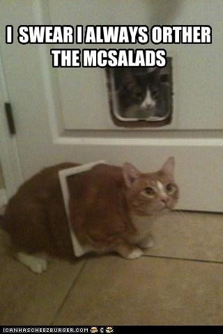 fat McDonald's true story funny - 7446164736