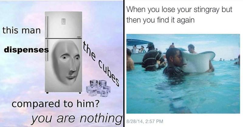 amusing memes, funny memes