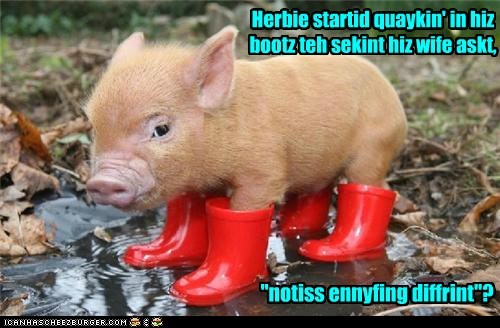 pig wife boots cute funny - 7446522368