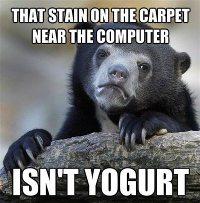 Memes,if you know what i mean,yogurt,Confession Bear,funny