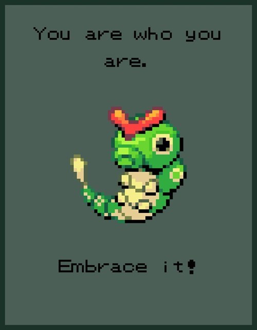 You are who your are - Embrace It! - 24 Life Lesson from Pokemon.