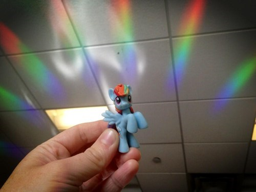 rainboom IRL funny rainbow dash - 7447793152