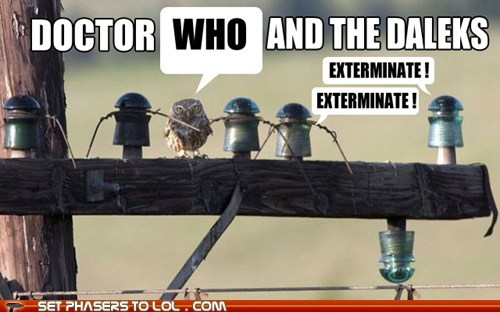 daleks owls doctor who funny - 7448325888