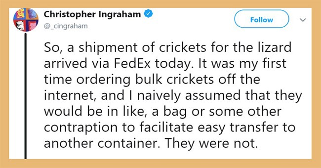 A funny start of a thread on Twitter about a guy who ordered crickets for his pet lizard and he goes on to tell the story of how the crickets escaped the box