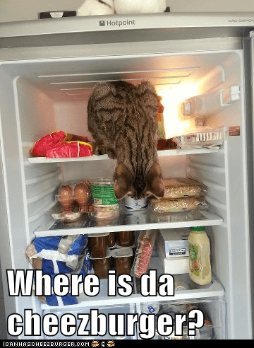 Where is da cheezburger?