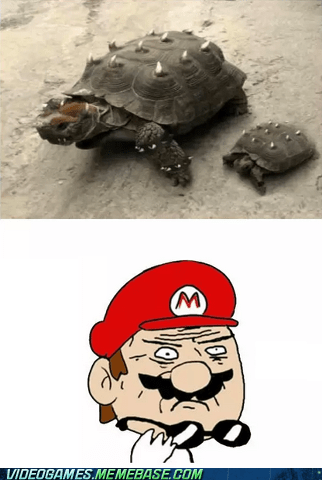 mother of god,bowser,mario,funny