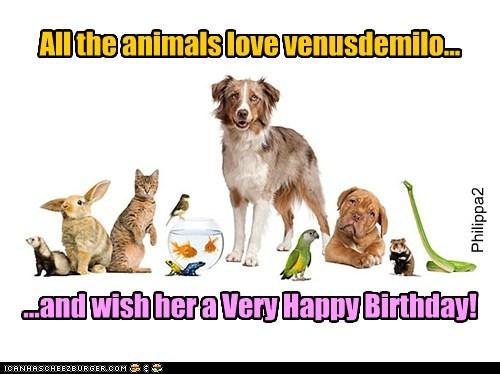 All the animals love venusdemilo... ...and wish her a Very Happy Birthday! Philippa2