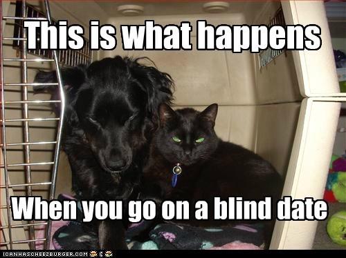 interpecies love blind date funny - 7450439168