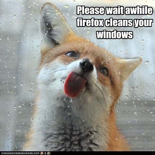 Please wait awhile firefox cleans your windows