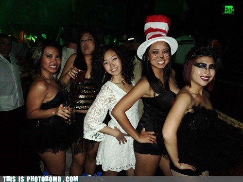 photobomb cat in the hat costume funny