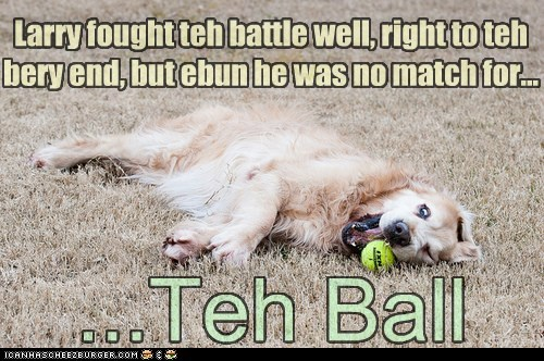 the ball funny - 7452535552