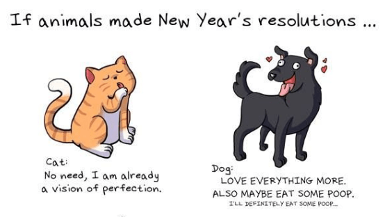 new years resolutions new years animals web comics - 7453189
