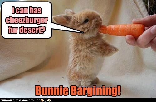 bargin bunny funny - 7453834752