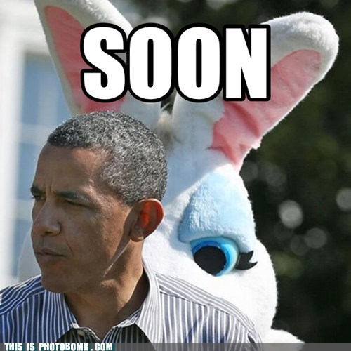 photobomb SOON obama president funny bunny costume Easter Bunny - 7454817024