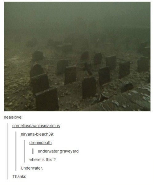 tumblr graveyard funny underwater graveyard - 7455992320