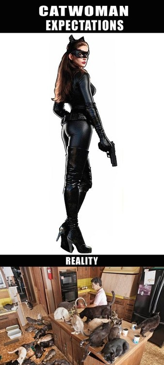 catwoman funny - 7456226304