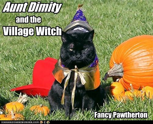 Aunt Dimity and the Village Witch Fancy Pawtherton