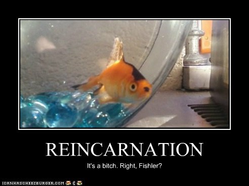 REINCARNATION It's a bitch. Right, Fishler?