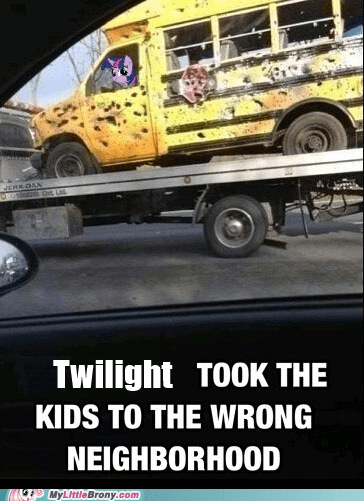 IRL,twilight sparkle,funny,bus
