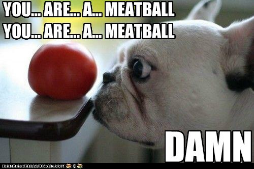 YOU... ARE... A... MEATBALL YOU... ARE... A... MEATBALL DAMN