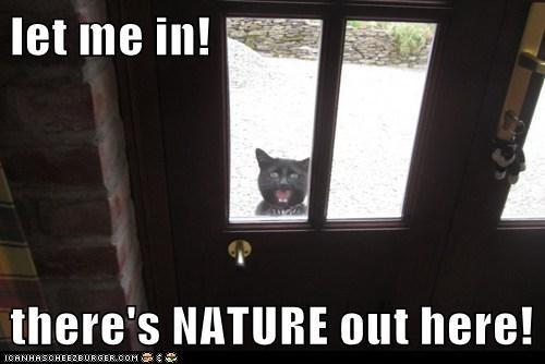 nature outside funny - 7459028736