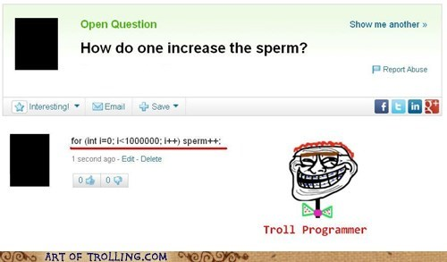 code troll programmer programming yahoo answers - 7459187968