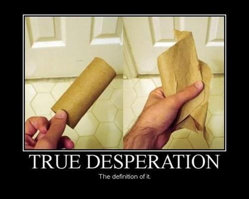 desperation,toilet paper,funny,cardboard