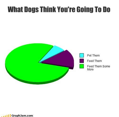 dogs graphs funny Pie Chart - 7459644672