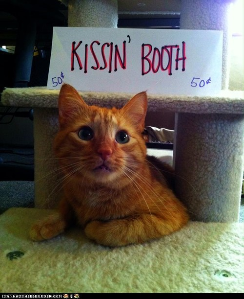 kissing booth,funny