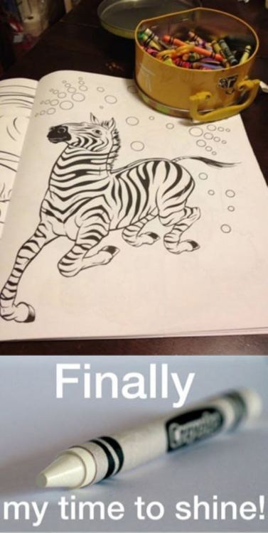 crayons zebras coloring funny - 7459852032