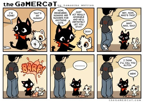 gaming comics missingno gamer cat pokemo funny - 7459921664