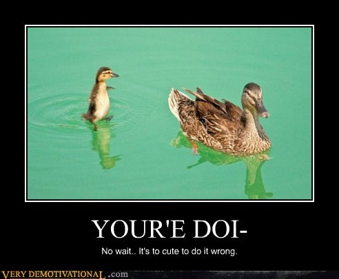 ducks cute doing it wrong funny - 7460397824