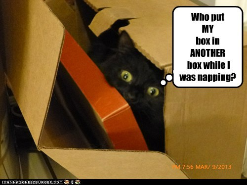 Who put MY box in ANOTHER box while I was napping?