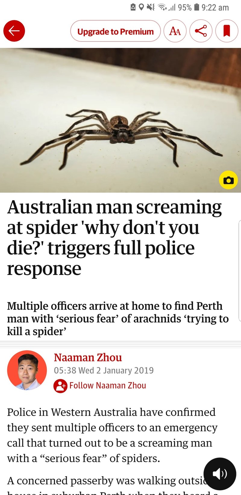 spiders in australia are something you call the police for