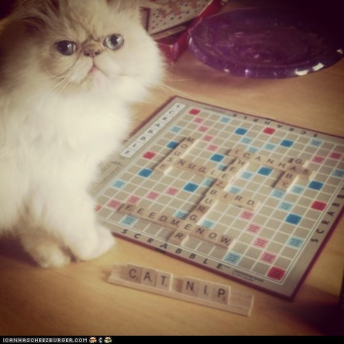 game cheating scrabble funny