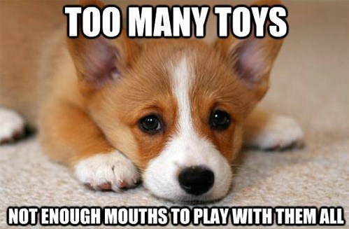 toys corgi First World Problems - 7462047232