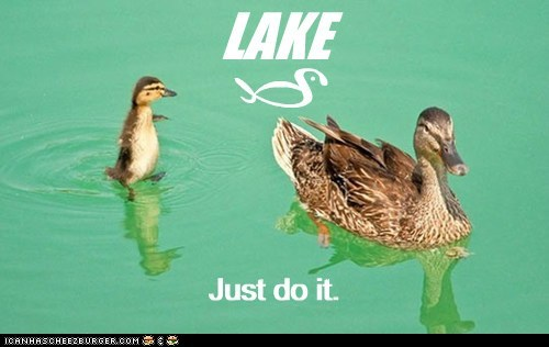 LAKE z Just do it. Just do it. ) n
