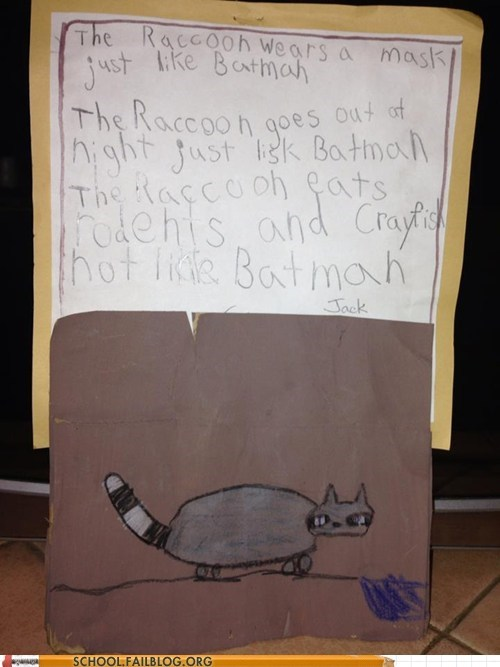 assignment,raccoon,batman,funny,g rated,School of FAIL