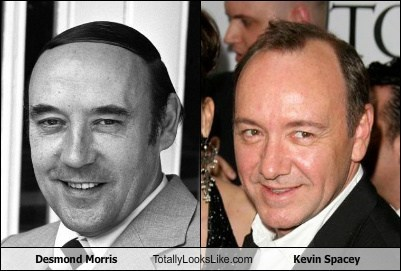 desmond morris totally looks like kevin spacey funny