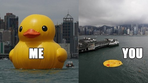 deflated,IRL,rip,funny,rubber duck,hong kong